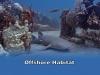 11-offshore-habitat