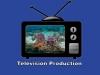 19-television