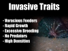 5 Lionfish Invasive Traits