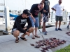 kistel-tisiri-lionfish-round-up