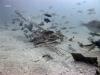 6-plane-wreckage-underwater