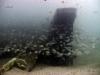 5-florida-barge-reef