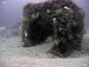 Taylor Reef, St. Augustine, box culvert